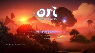 Ori and the Will of the Wisps main menu ui screenshot